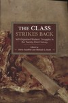 The Class Strikes Back : Self-Organised Workers' Struggles in the Twenty-First Century by Dario Azzellini